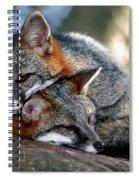 Grey Foxes Spiral Notebook