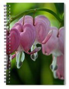 Hanging Hearts Spiral Notebook