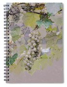 Hanging Thompson Grapes Sultana Spiral Notebook