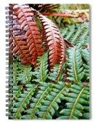 Hapu'u Frond Spiral Notebook