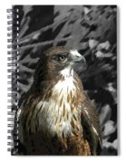 Hawk Of Prey Spiral Notebook