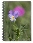 Heart's Ease Wild Viola Spiral Notebook