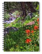 High Country Wildflowers 2 Spiral Notebook