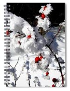 Highland Frost Spiral Notebook