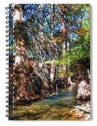 Hint Of Fall Spiral Notebook