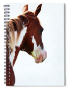 Horse Portrait Spiral Notebook