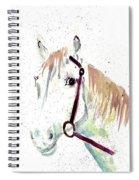 Horse Study Spiral Notebook