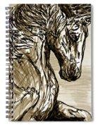 Horse Twins I Spiral Notebook