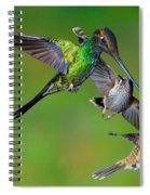 Hummingbirds At Feeder Spiral Notebook