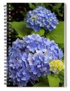 Hydrangeas Spiral Notebook