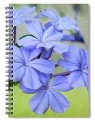 I Love Blue Flowers Spiral Notebook
