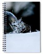 Ice Aged Spiral Notebook