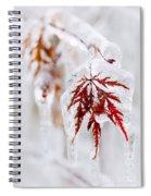 Icy Winter Leaf Spiral Notebook
