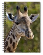 I'm All Ears - Giraffe Spiral Notebook