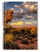 In The Golden Hour  Spiral Notebook