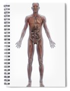 Internal Human Anatomy Spiral Notebook