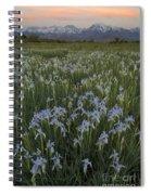 Iris Field Spiral Notebook