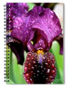 Iris Tongue Spiral Notebook