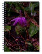 Jack In The Pulpit Spiral Notebook