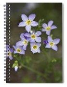 Jacob's Ladder Spiral Notebook