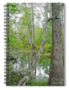 Jean Lafitte Swamp Spiral Notebook