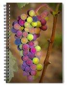 Jewel Tones Spiral Notebook