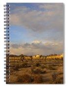 Joshua Tree National Park Spiral Notebook