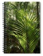 Jungle Ferns Spiral Notebook