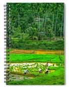 Jungle Homestead Spiral Notebook