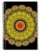 Kaleidoscope Ernst Haeckl Sea Life Series Triptych Spiral Notebook