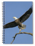 King Of The Sky 3 Spiral Notebook