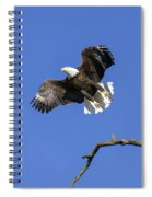 King Of The Sky 4 Spiral Notebook
