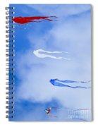 Kites On Ice Spiral Notebook