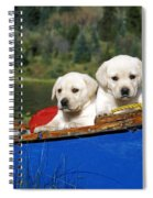 Labrador Retriever Puppies Spiral Notebook