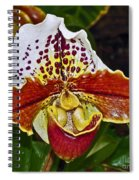 Lady Slipper Orchid Spiral Notebook