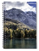 Larch Pine Reflections Spiral Notebook
