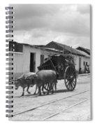 Latin America, C1920 Spiral Notebook
