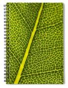 Leafy Details Spiral Notebook