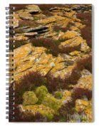Lichened Rocks Spiral Notebook
