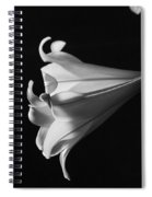 Lily 1 Spiral Notebook