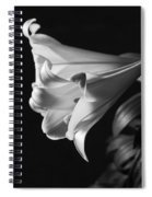 Lily 2 Spiral Notebook