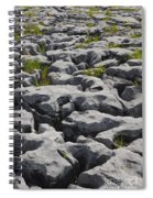 Limestone In The Burren Spiral Notebook