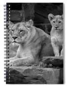 Lioness And Cubs Spiral Notebook