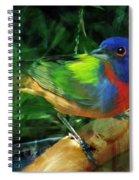 Living Rainbow Spiral Notebook