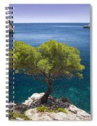 Lone Pine Tree Spiral Notebook