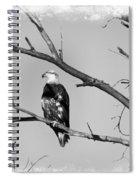 Loner Spiral Notebook