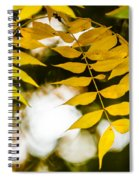 Look Up Spiral Notebook