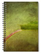Looking For Dinner Spiral Notebook