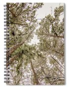 Looking Up At Snow Covered Tree Tops Spiral Notebook