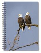 Majestic Beauty 5 Spiral Notebook